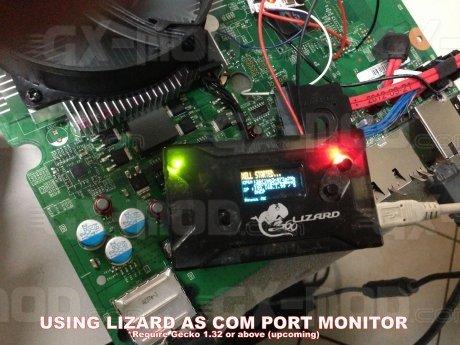 lizard_comport.jpg